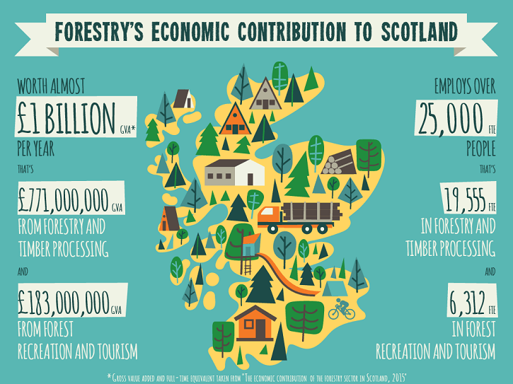 forestry_infographic-1