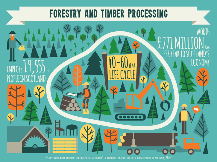 forestry_infographic-2