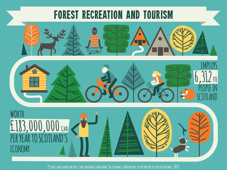 forestry_infographic-3